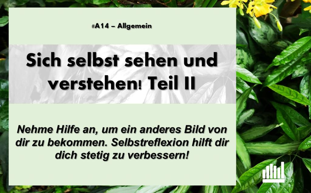 #A14 Sich selbst sehen II