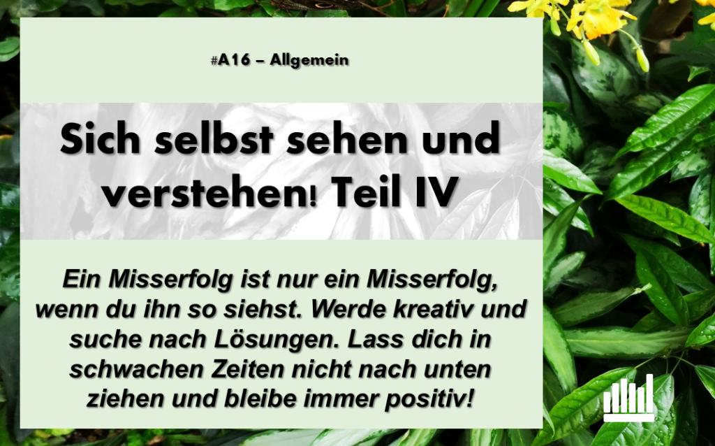 #A16 Sich selbst sehen IV