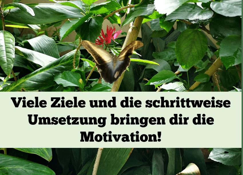#A9 Die Motivation fehlt?