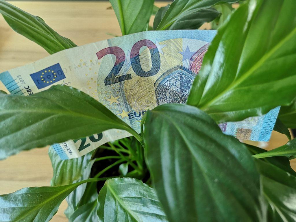 #F5 Finanzielle Ziele